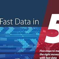 Whitepaper: 5 Steps to Make the Right Moves with Fast Data
