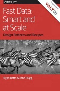 ebook Fast Data Smart and at Scale