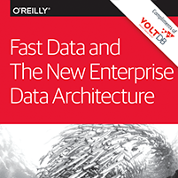 ebook: ebook: Fast Data and the New Enterprise Data Architecture