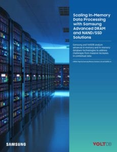 Whitepaper: Scaling In-Memory Data Processing