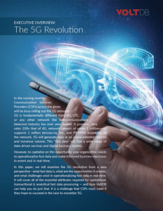 5G Executive Summary and Checklist